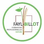 logo fayl billot