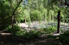 Vue sur le jardin des mondes paradoxaux