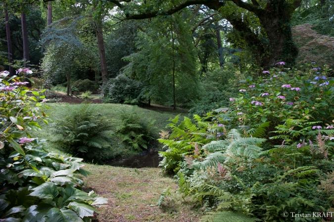 Bois des Moutiers-8.jpg
