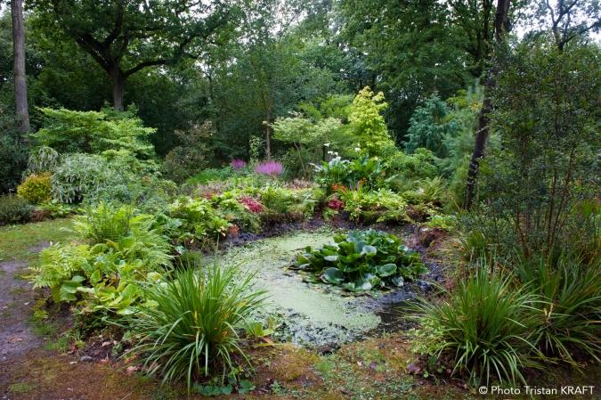 Jardin le vasterival festival des jardins for Le jardin normand