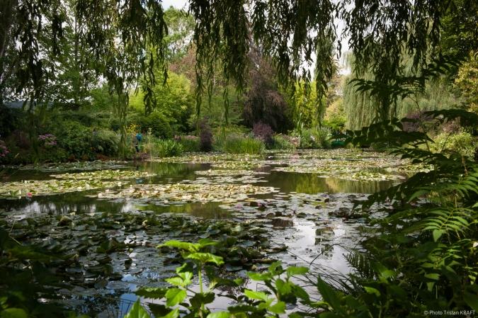 Jardin de Givergny - Claude_Monnet-23.jpg