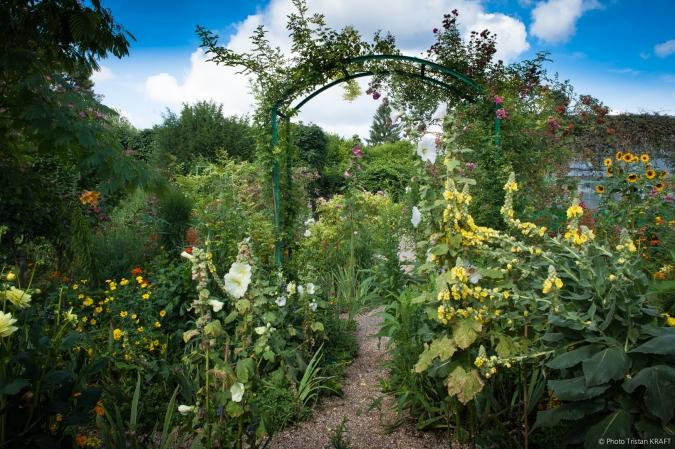 Jardin de Givergny - Claude_Monnet-8.jpg