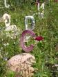 Les lettres ensevelies sous la prairie fleurie du jardin Le monde d'Orbae aux îles Indigo