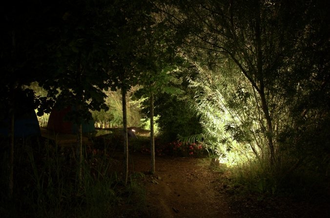 Festival des jardins Saline 2016_Nocturne-011.jpg