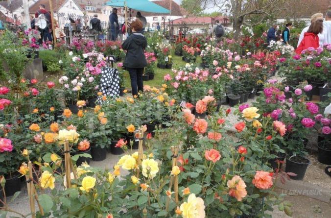 ce-rendez-vous-incontournable-pour-les-jardiniers-amateurs-aura-pour-invite-d-honneur-arnaud-mouly-directeur-du-jardin-botanique-de-besancon-photo-archives-.jpg