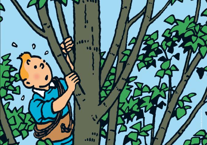 Invit Tintin