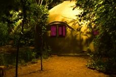 Habitat vivant DSC_1713