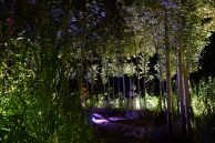 La chambre verte DSC_1690